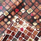 ラミネート生地 生地 アソートチョコレート 綿100% 布 手芸 通園 通学 入園 入学 チョコレート スイーツ 女の子