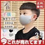 冷感マスク 子供用マスク ひんやり 3枚入り 夏用マスク 洗えるマスク UVカット 涼しいマスク 吸湿速乾 涼しい 接触冷感 送料無料メール便