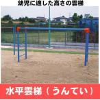 水平雲梯 うんてい  学校 幼稚 保育園用品 大型遊具