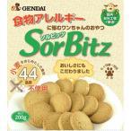 (正規品)現代製薬 SorBitz(ソルビッツ) 200g(26200180)