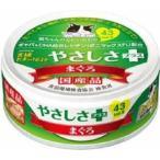 三洋食品 62食通たまの伝説 やさしさプラス  まぐろ 70g (30900005)