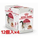ロイヤルカナン インスティンクティブ グレービー   1〜10歳の健康な成猫用 1ケース(85g×48個)(52909975)