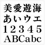 【カッティング文字 20cm  7 明朝体】 屋外使用OK 看板・POP・車両・表札などに!!