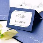 ショッピング結婚 新発売\キラキラ/「ナイトブルー」席札手作りセット(10名様分)/結婚式