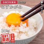 新米予約 平成29年度 滋賀県産 みずかがみ 30kg 米 お米 特別栽培米 近江米 玄米 送料無料