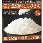 コシヒカリ 5kg 5kg×1袋 米 お米 新米 魚沼産コシヒカリ 29年産 送料無料 産地直送 新米予約