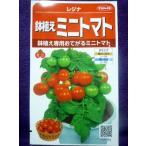 ★種子★ 鉢植えミニトマト レジナ V  サカタのタネ 17.10 (ゆうパケット便可能)