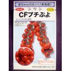 ★種子★ CFプチぷよ ミニトマト 渡辺採種場 20.04 (ゆうパケット便可能)