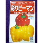 ★種子★ 彩りピーマン ソニアミックス V サカタのタネ 17.10 (ゆうパケット便可能)