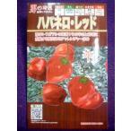 ★種子★ ハバネロ・レッド トウガラシ フタバ種苗 18.01 (ゆうパケット便可能)
