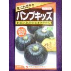 ★ 種子 ★ 処分 ★  パンプキッズ かぼちゃ カネコ種苗 16.10 (ゆうパケット便可能)
