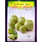 ★種子★ パリーノ・オリーブ  丸形ズッキーニ トキタ種苗 20.10 (ゆうパケット便可能)