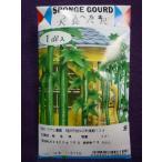 ★種子★ 大長六尺へちま 糸瓜 アサヒ農園 17.10 (ゆうパケット便可能)