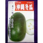 ★種子★ 沖縄冬瓜 とうがん アサヒ農園 18.10 (ゆうパケット便可能)