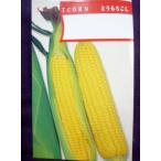 ★種子★ 甲州とうもろこし トウモロコシ 1L アサヒ農園 21.10 (キャッシュ限定でレターパック便も対応)