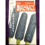 ★種子★ 黒もちとうもろこし トウモロコシ 1L アサヒ農園 21.10 (キャッシュ限定でレターパック便も対応)