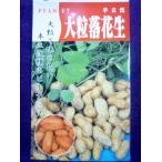 ★種子★ 大粒落花生 半立性 50ml 田中農園 22.01 (ゆうパケット2cm以下便可能)