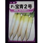★ 種子 ★  宝青2号 ダイコン 宝種苗 17.06 (ゆうパケット便可能)