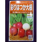 ★種子★ 彩りはつか大根 カラフルファイブ V サカタのタネ 18.05 (ゆうパケット便可能)