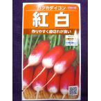 ★種子★ 紅白 ハツカダイコン V サカタのタネ 18.10 (ゆうパケット便可能)