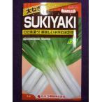 ★種子★ 太ねぎ SUKIYAKI(スキヤキ) ネギ カネコ種苗 21.07 (ゆうパケット便可能)