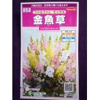 ★種子★ 金魚草 ファルファレ ミックス サカタのタネ 17.05 (ゆうパケット便可能)