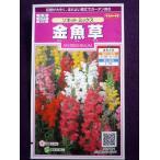 ★種子★ 金魚草 ソネット ミックス サカタのタネ 17.05 (ゆうパケット便可能)