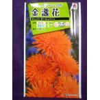 ★種子★処分★ 金盞花 オレンジ ポーキュパイン タキイ種苗 16.04 (ゆうパケット便可能)