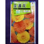 ★種子★処分★ 金盞花 スター混合 タキイ種苗 16.10 (ゆうパケット便可能)