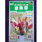 ★種子★ 金魚草 高性一代交配系 混合 サカタのタネ 17.05 (ゆうパケット便可能)