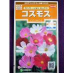 ★種子★ コスモス センセーション ミックス サカタのタネ 17.10 (ゆうパケット便可能)