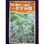 ★種子★ 宿根かすみ草 八重咲き サカタのタネ 18.05 (ゆうパケット便可能)