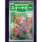 ★種子★ スイートピー スーパー ミックス サカタのタネ 17.05 (ゆうパケット便可能)