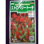 ★種子★ ストロベリートーチ クリムゾン クローバー サカタのタネ 18.05 (ゆうパケット便可能)