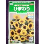 ★種子★ ひまわり 切り花用 ミックス サカタのタネ 17.10 (ゆうパケット便可能)