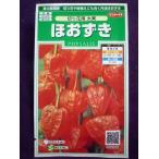 ★種子★処分★ ほおずき 切り花用 大実 サカタのタネ 16.10 (ゆうパケット便可能)