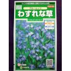 ★種子★ わすれな草 ブルームッツ サカタのタネ 17.05 (ゆうパケット便可能)