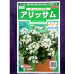 ★種子★ アリッサム スノークリスタル サカタのタネ 18.05 (ゆうパケット便可能)