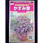 ★種子★ かすみ草 ジプシー ディープローズ サカタのタネ 17.10 (ゆうパケット便可能)