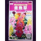 ★種子★ 金魚草 トゥイニー ミックス サカタのタネ 17.05 (ゆうパケット便可能)