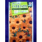 ★種子★ ディモルフォセカ スプリング フラッシュ オレンジ タキイ種苗 19.04 (ゆうパケット便可能)