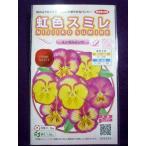 ★種子★ 虹色スミレ(R) エンゼルピンク サカタのタネ 17.05 (ゆうパケット便可能)