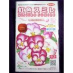 ★種子★ 虹色スミレ(R) スィートハート サカタのタネ 17.05 (ゆうパケット便可能)
