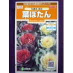 ★種子★ 葉ぼたん 丸葉系 混合  サカタのタネ 17.05 (ゆうパケット便可能)