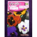 ★種子★ パンジー プロント スカーレット サカタのタネ 17.05 (ゆうパケット便可能)