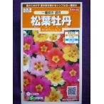 ★種子★ 松葉牡丹 一重咲き 混合 サカタのタネ 17.10 (ゆうパケット便可能)