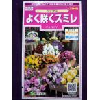 ★種子★処分★ よく咲くスミレ ミックス サカタのタネ 17.05 (ゆうパケット便可能)