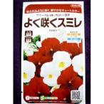 ★種子★ よく咲くスミレ カラーパレット ベリー・ラテ サカタのタネ 17.05 (ゆうパケット便可能)