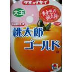 ★野菜苗★接木★トマト★ 桃太郎ゴールド 1鉢
