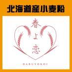 「春よ恋100%」北海道産パン用小麦粉 25kg